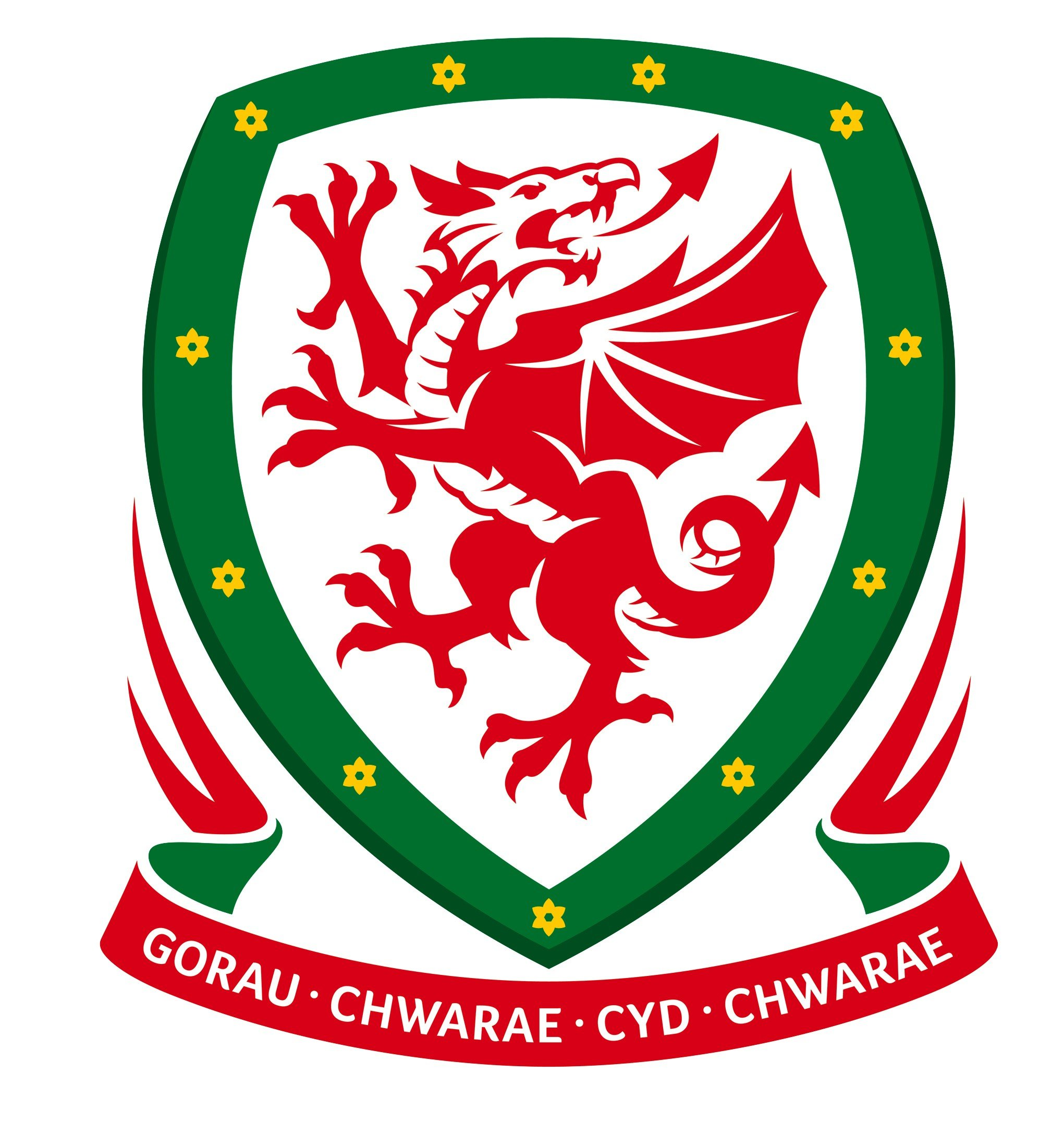 FAW Wales Football Physio